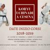 Koryu Uchinadi a Cesena: il calendario corsi 2018/2019 è online!
