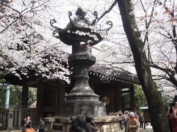 Il tempio shintoista Yasukuni-jinja a Tokyo