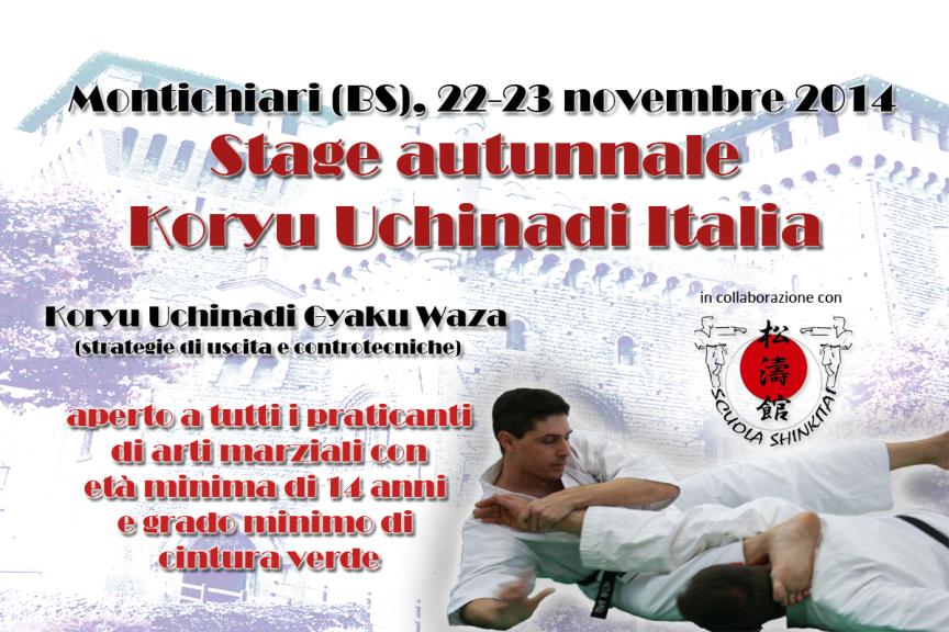 Seminario autunnale 2014 Koryu Uchinadi Italia