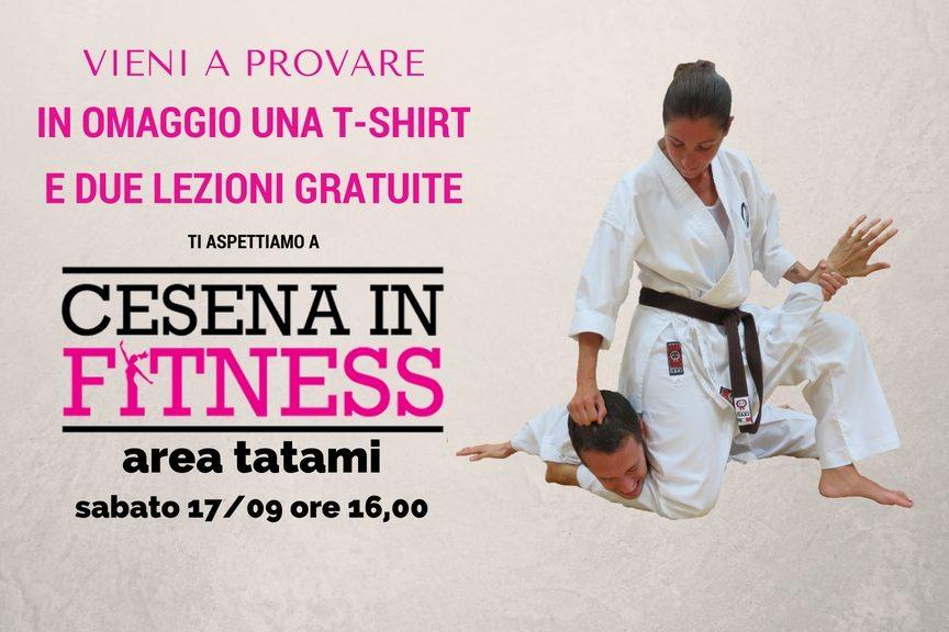 Koryu Uchinadi: difesa personale a Cesena