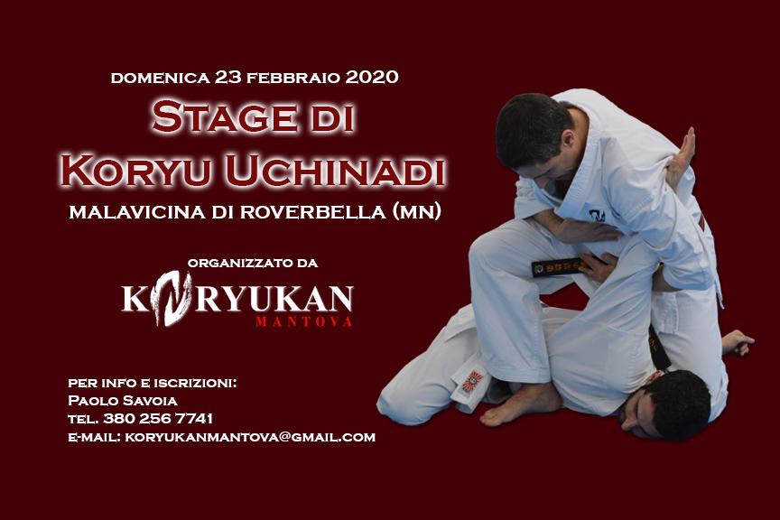 Sesto Seminario Invernale Koryu Uchinadi